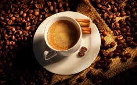 Обои кофе, палочки, чашка, корица, мешок, кофейные зерна, coffee