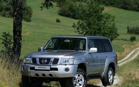 Картинка Nissan, Patrol, Safari