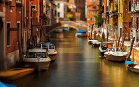 Обои цветы, мост, лодка, дома, утро, катер, Италия