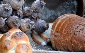 Обои стол, зерно, мак, хлеб, ломти, тмин