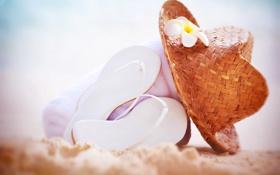 Обои пляж, лето, отдых, шляпа, очки, summer, beach