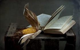 Картинка книга, фон, кукуруза