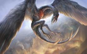 Обои полет, дракон, крылья, перья, арт, в небе, yefumm