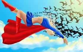Обои небо, полет, птицы, арт, костюм, плащ, DC Comics