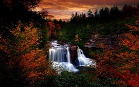 Картинка деревья, закат, листва, водопад, Лес