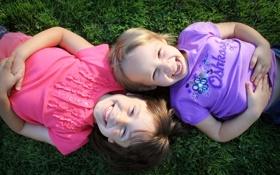 Обои радость, позитив, смех, зелень. растение, природа. трава, обои, улыбка