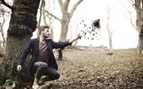Картинка листья, птица, человек, ситуация