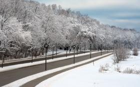 Картинка зима, город, улица