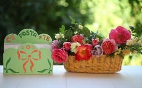 Картинка цветы, розы, натюрморт