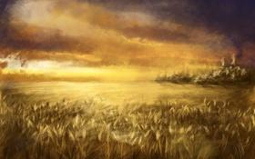 арт, поле, пшеница, колосья, небо, облака обои