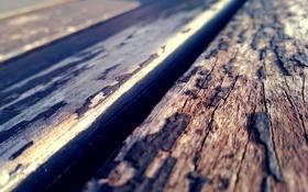 Обои доски, текстура, кора, солнечно, деревяшки