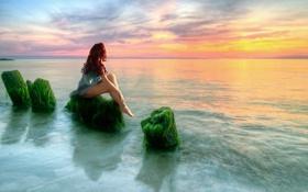 Обои море, девушка, водоросли, закат, камни, тина, сидит