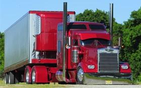 Обои kenworth, автомобили, trucks, грузовик