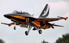 Картинка самолёт, реактивный, Golden Eagle, двухместный, сверхзвуковой, учебно-боевой, T-50