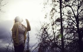 Картинка осень, девушка, солнце, деревья, ветки