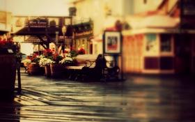 Картинка вазоны, лавочка, улица, скамья, вывески, скамейка, магазины