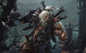 Обои седые, варвар, секира, косички, меч, diablo 3, замок