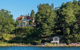 Обои лес, река, дом, Швеция, берег, Stockholm, особняк