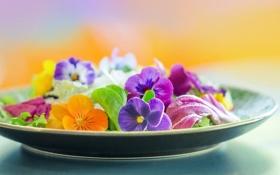 Обои фон, тарелка, цветы