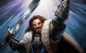 Обои рука, меч, воин, властелин колец, гном, lord of the rings, Guardians of Middle-earth
