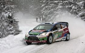 Обои Ford, Зима, Снег, Лес, WRC, Rally, Fiesta