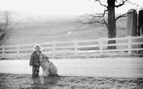 Картинка собака, настроение, дорога, девочка