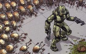 Обои Оружие, Halo, Мастер Чиф