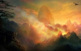 Картинка пожар, скалы, птица, полет, деревья, дома, огонь