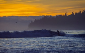 Обои surfer, sombrio beach, sunset