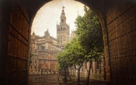 Картинка деревья, город, улица, здание, испания, севилья