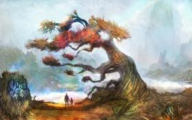 Картинка туман, дерево, мальчик, арт, мужчина