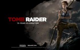 Картинка Tomb Raider, Лара Крофт, Lara Croft