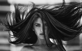 Картинка девушка, фото, ветер, волосы, черно-белое