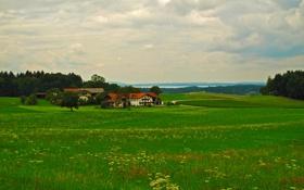 Картинка река, Бавария, зелень, Traunstein, Германия, трава, дорога