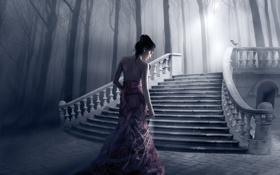 Картинка девушка, свет, деревья, птица, лестница, ступеньки