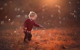 Обои мальчик, мыльные пузыри, боке, краски осени