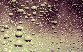 Обои стекло, вода, капли, макро, поверхность, drop