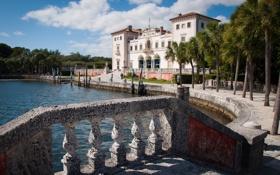 Картинка пальмы, Майами, Флорида, Miami, Florida, Вилла Вискайя, Vizcaya Museum and Gardens