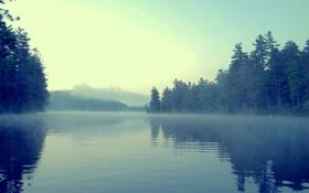 Обои 00SpaceOddity00, лес, mist, берег, туман, вода