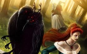 Обои мутация, лес, девушка, ворон, птицы, всадник, арт