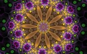 Обои цветок, узор, объем, симметрия