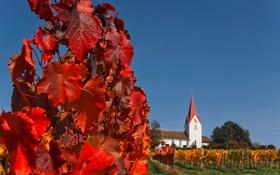 Картинка осень, небо, листья, дом, башня, Швейцария, церковь