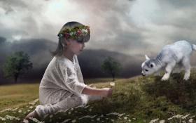 Обои child, Daisies, Sheep, photomanipulate
