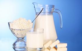 Обои кувшин, стакан, сыр, ломтики, творог, молоко, чашка