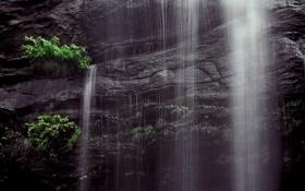 Картинка природа, водопад, кусты, скала