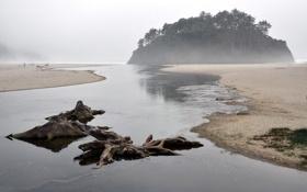 Картинка море, пейзаж, туман