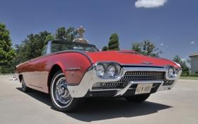 Картинка небо, деревья, красный, Roadster, Ford, Форд, родстер