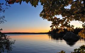 Картинка небо, ветки, природа, озеро, фото, дерево, камень