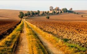 Картинка дорога, поле, небо, деревья, дом, холмы, пашня