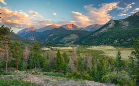 Обои лес, горы, природа, Colorado, Rocky Mountain National Park, Fall River Road